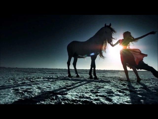 CIRQUE DU SOLEIL - ALEGRIA Full HD