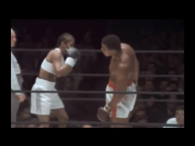 Ali vs Ali !! Laila vs Muhammad - Great Adidas Commercial