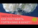 Как поставить гортензию в свадебный букет? Пошаговый мастер-класс