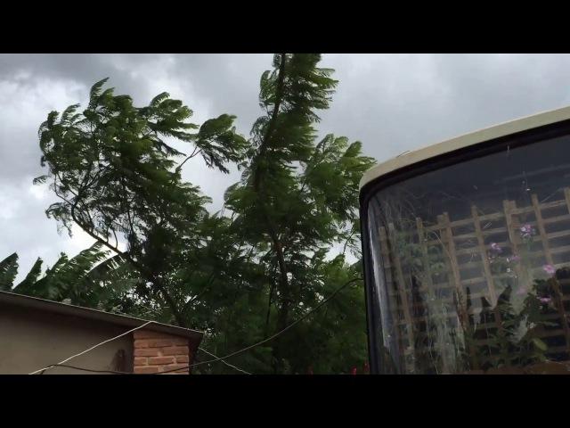 Pau D'Óleo: Ventania. Sobradinho, Brasil. IMG_6190. 249 MB. 16h18. 06 de dezembro de 2015