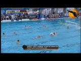 Water Polo (coub11)