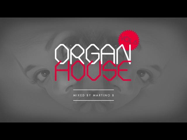 Martino B ● Organ House v006 (January 2017)