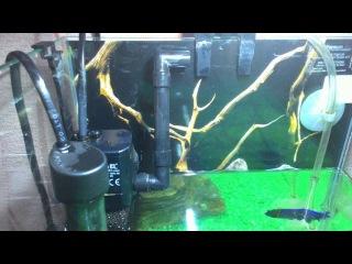 Как убрать ШУМ и ТЕЧЕНИЕ в аквариуме от внутреннего фильтра