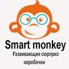 SMART Monkey - развивающие наборы для детей