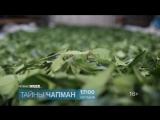 Тайны Чапман 6 апреля на РЕН ТВ