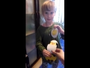 цыпленок Цыпа