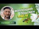 Верующий подобен пчеле - Нурмухаммад Иминов azan.kz