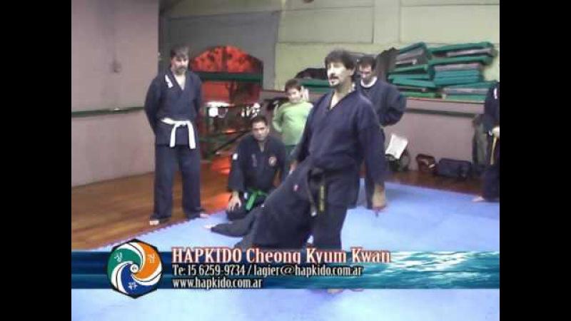Patadas en Hapkido Cheong Kyum Kwan (2ª parte)