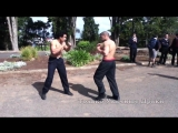 Clean street fight ends in knockout