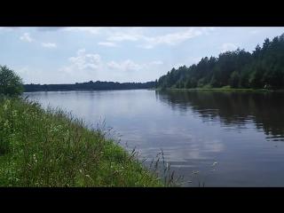 0286 160702 53.303773 35.291433 Орловское Полесье озеро Старое со стороны источника
