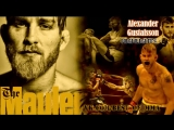 Alexander Gustafsson Highlights