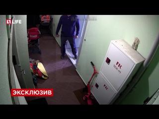 Улитка, кепка и ВДВ: камеры сняли самых глупых преступников в Москве.