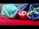 Свинья и печенька  Pig and cookies  Schwein und Pltzchen  Prase a suenky