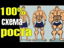 Мышцы начнут расти даже у дрища