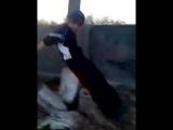 В Ахтубинске любители паркура прыгали по мемориальным плитам