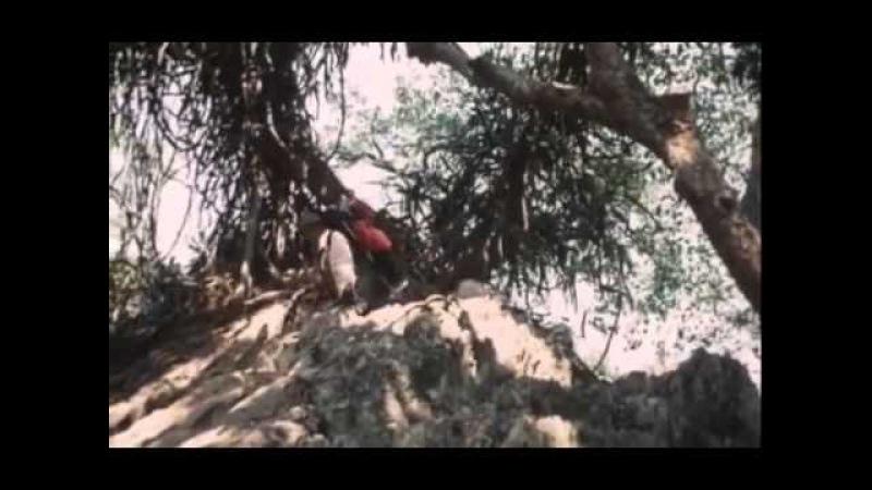 Заклятие долины змей Художественный фильм Русский перевод