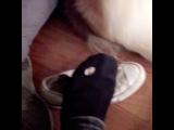 Instagram video by D A N N Y . W O R S N O P  Jan 6, 2017 at 814pm UTC