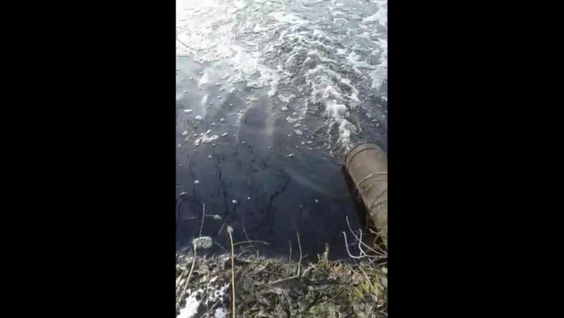 Лука-Мелешківська викиди відходів в річку 《Чапля》