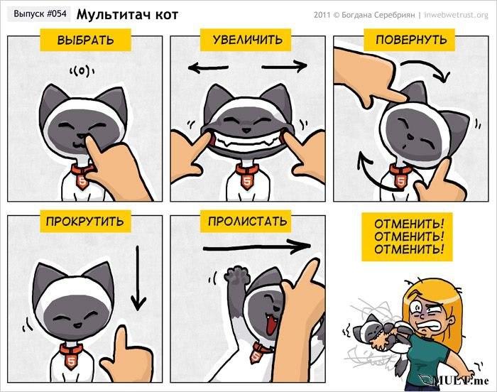 Мультитач кот
