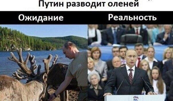 МВД России закупит еще 120 реактивных огнеметов - Цензор.НЕТ 3755