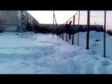 сальтуха зимой