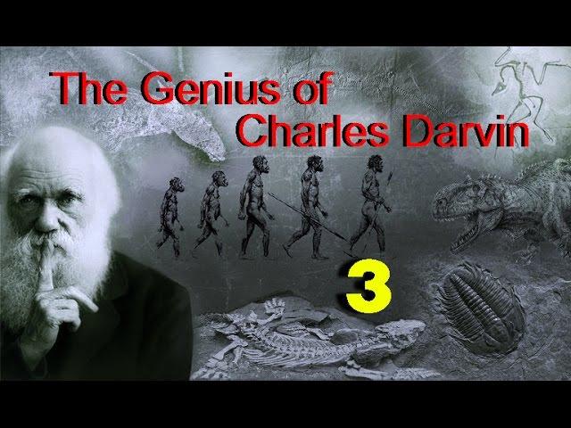 Гений Чарльза Дарвина: Бог наносит ответный удар / 3 серия