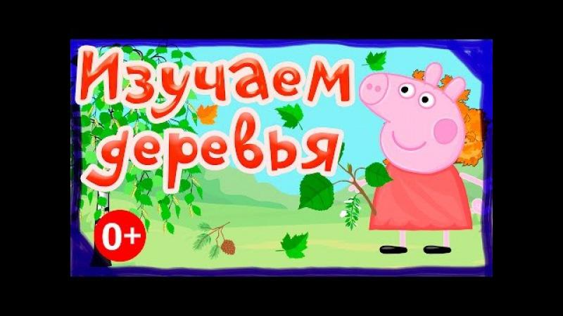 Свинка Пеппа. Изучаем виды деревьев. Развивающие мультики для детей от 0 до 4х лет