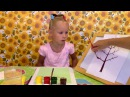 Как научить ребёнка 4 лет рисовать деревоHow to teach a child of 4 years to paint a tree