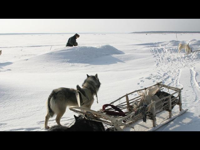 Счастливые люди Енисей Зима серия 4 Дмитрий Васюков
