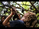 Woods Stage S03E06 Ty Segall and Wand Feel @Pickathon 2015