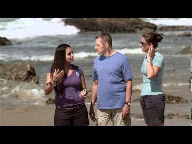 Начальный курс дайвинга. Обучающее видео PADI Open Water Diver (PADI OWD)- часть 4