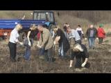 Весенний этап акции «Зеленая столица» в Хохловском сельском поселении