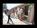 BBC Заповедник в дебрях Африки 18 серия Реальное ТВ животные 2006