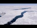 От полюса до полюса BBC Планета Земля