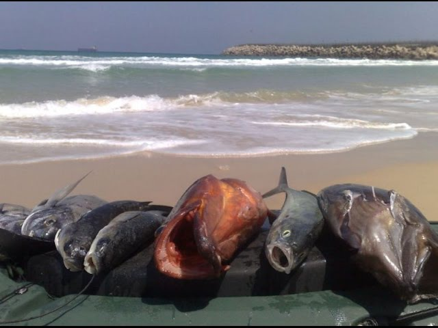 Подборка приятных засад в подводной охоте на групера spearfishing take 2