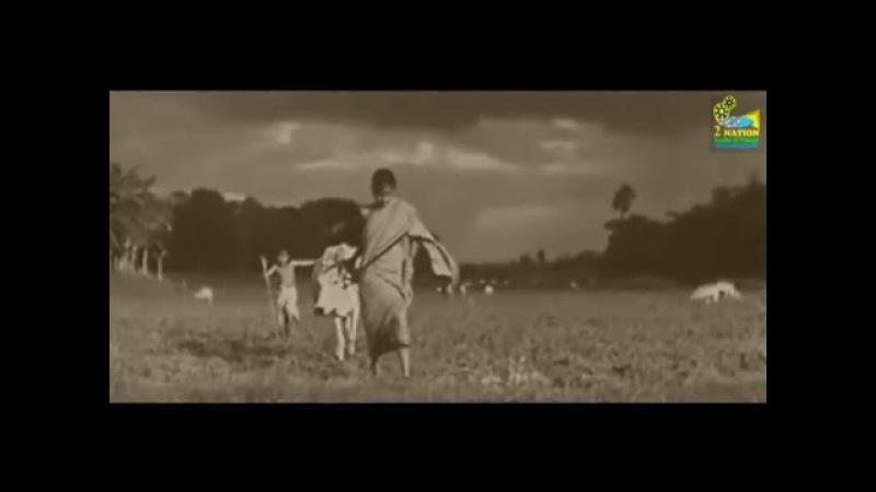 трейлер «ПЕСНЬ ДОРОГИ» (Pather Panchali, 1955, Индия), реж. Сатьяджит Рай