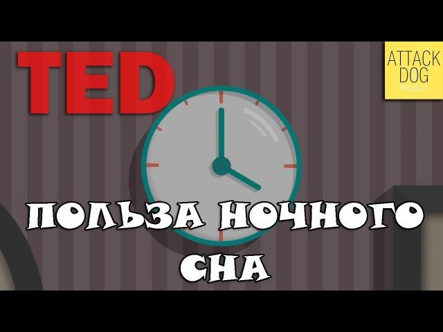 TEDed - Польза хорошего ночного сна (ATTACK DOG)