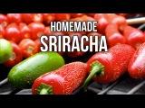 How to Make Homemade Sriracha (Hot Sauce)