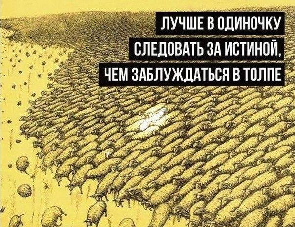 https://pp.vk.me/c636319/v636319056/1423/mKUiR7QtP8I.jpg