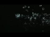 Капли дождя Футаж HD