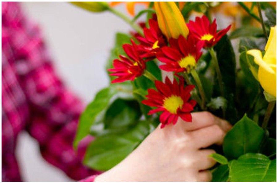 Как сохранить и продлить жизнь срезанным цветам в вазе