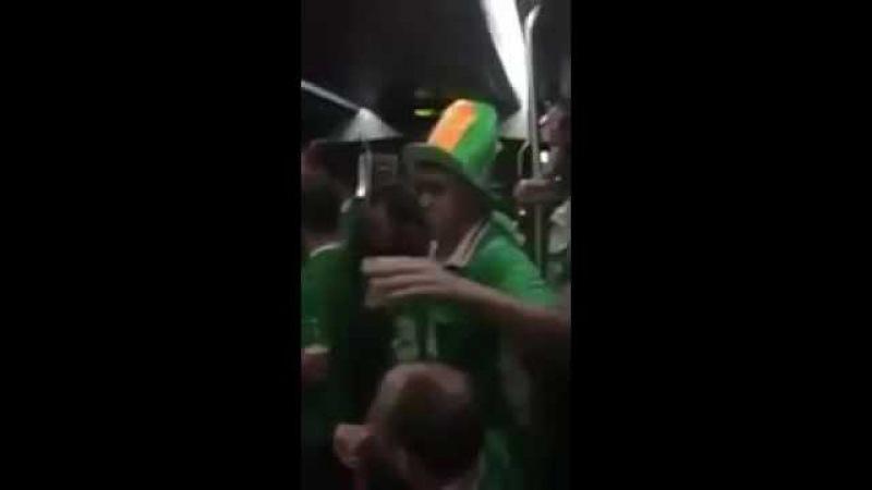 Ирландские болельщики поют колыбельную Irish fans singing a lullaby