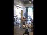 Впечатления о Корее. Кафе MOVEMBER. Часть 1