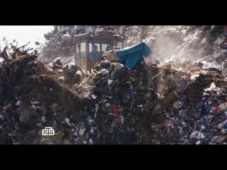 Грязный бизнес: НТВ раскрыло секреты российской мусорной мафии НТВ.Ru