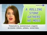 Speak Up  A rolling stone gathers no moss