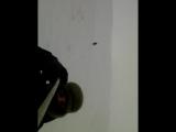 Поездка в Кувандык
