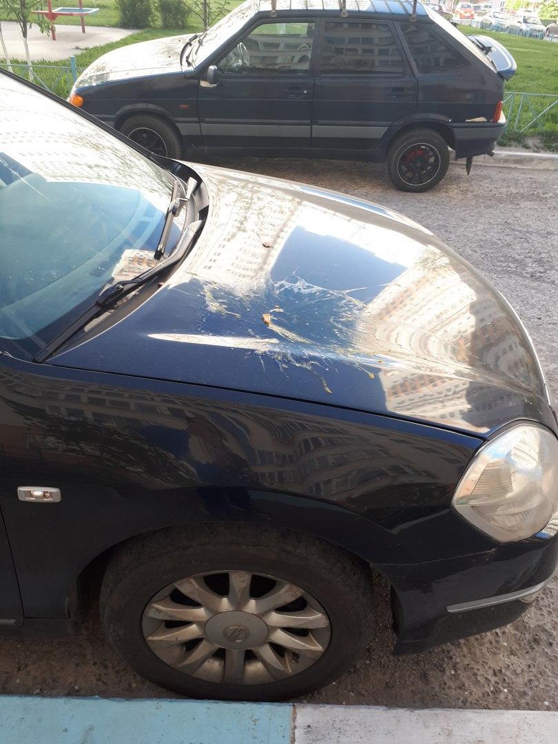 На проспекте Победы автомобили забросали яйцами из окна