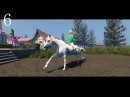 Список онлайн игр про лошадей