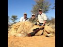 Охота на льва сафари
