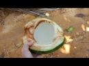 Cum sa spargi un cocos cu miinile goale